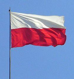 FLAGA POLSKI.jpg
