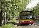autobus_wiosna.jpg